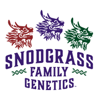 Snodgrass Family Genetics: Founders of DEMP Clean Cannabis Certification